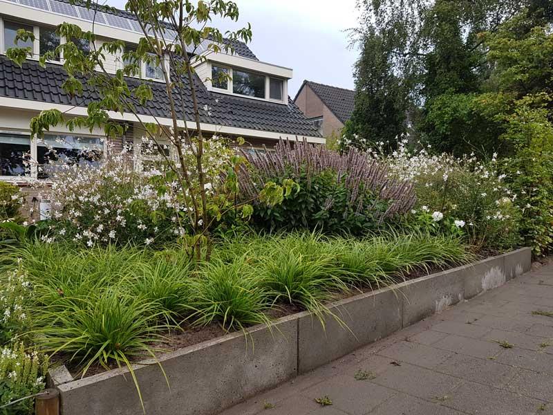 Beplanting van tuin