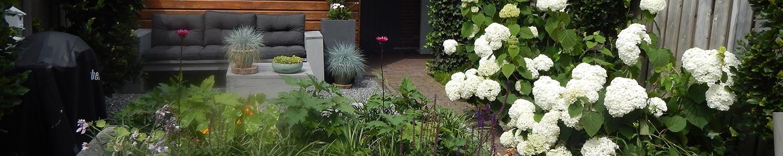 Planten en zaaien in september