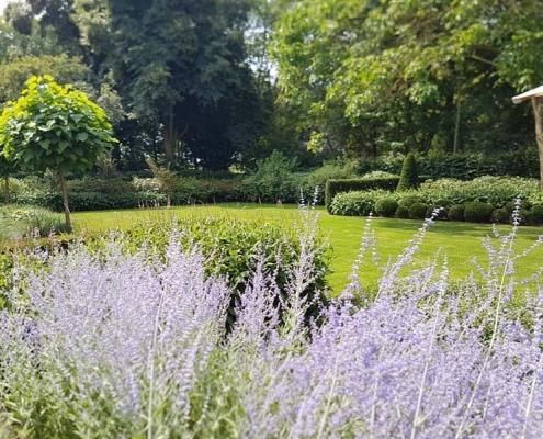 Tuinrenovatie villa Tilburg