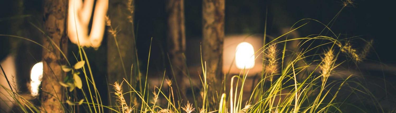 Tuinverlichting en elektra