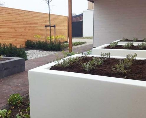 Witte kunststof plantenbakken