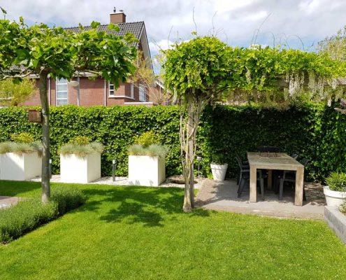 Tuinrenovatie Rosmalen - Groote Wielen